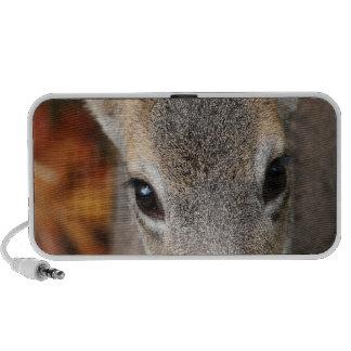Deer Fawn Closeup Portrait Travel Speakers