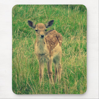 Deer fawn mouse pad