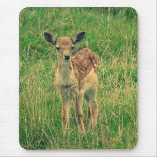 Deer fawn mousepads