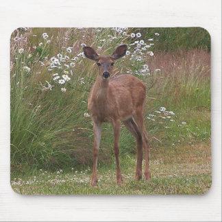 Deer Fawn Mousepad