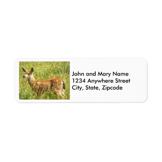 Deer Fawn Photo Return Address Labels