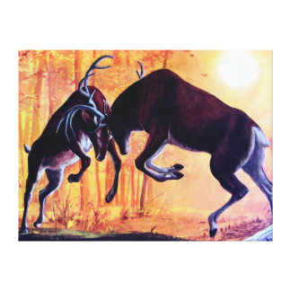 Deer Fight Canvas Prints