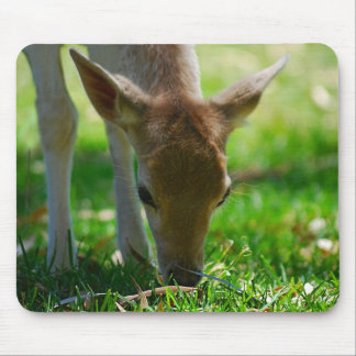 Deer Go Green Mouse Pads