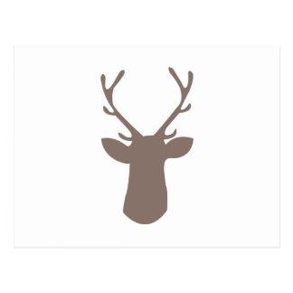 Deer Head Postcard