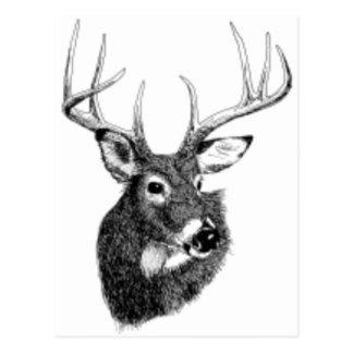 deer headgif postcard