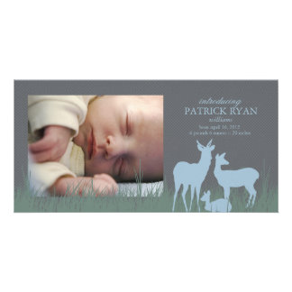 Deer in a Field Birth Announcement Picture Card