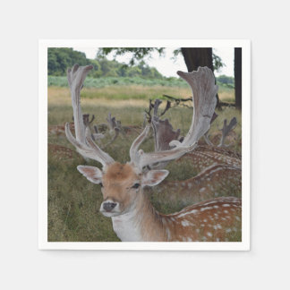 Deer in a park disposable napkin