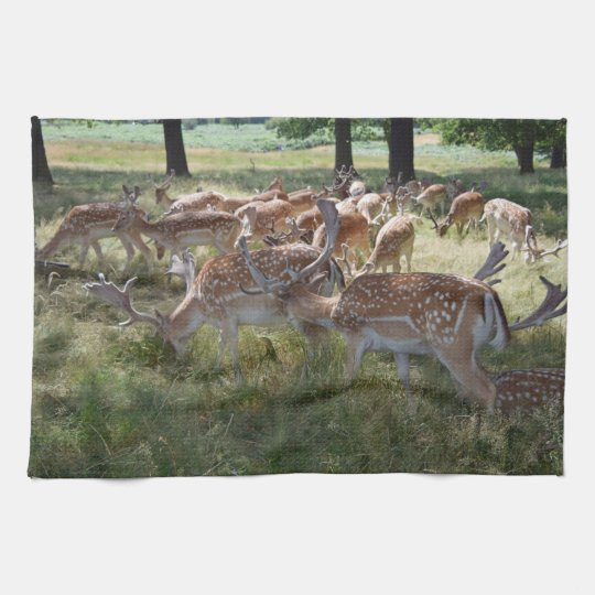 Deer in a park kitchen towel
