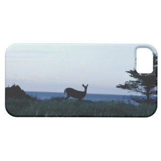 Deer in field by ocean barely there iPhone 5 case