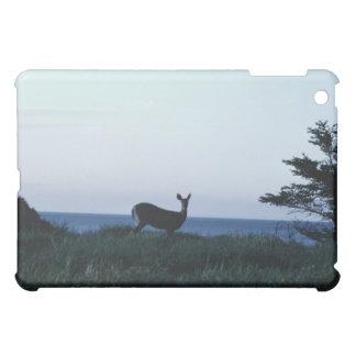 Deer in field by ocean iPad mini cover