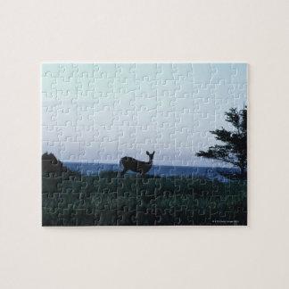 Deer in field by ocean jigsaw puzzle