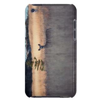Deer in field of tall grass iPod Case-Mate case