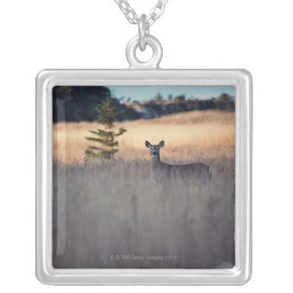 Deer in field of tall grass silver plated necklace