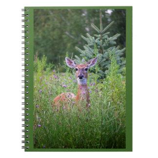 Deer in flowery thicket photo notebook