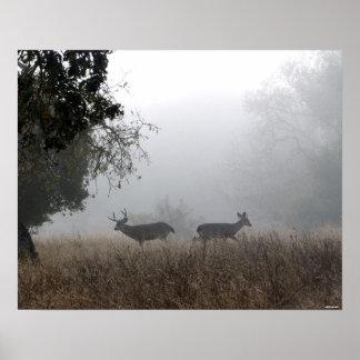 Deer in Fog Poster