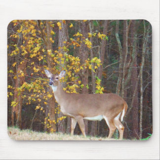 Deer in Front of Yellow Autumn Tree Mouse Mat