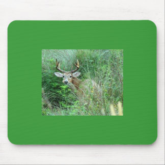 Deer in ground cover mouse pad