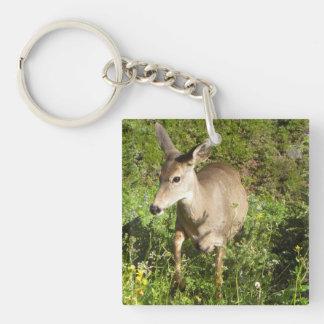 Deer In My Midst Key Ring