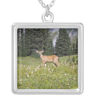 Deer in Paradise Park Necklaces