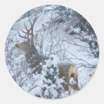 Deer in Snow Classic Round Sticker