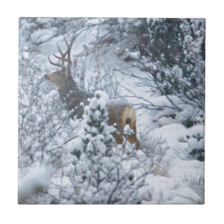 Deer in Snow Tile