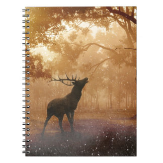 DEER IN THE FOREST NOTEBOOKS