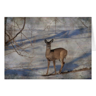 Deer in the snow card