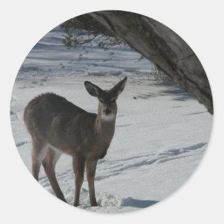 Deer in the winter round sticker