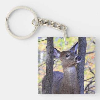 Deer in The Woods Key Ring