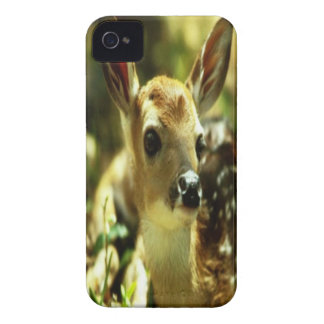 Deer iPhone 4 cover