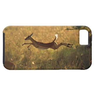 Deer leaping through field iPhone 5 case