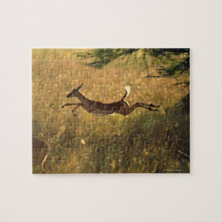 Deer leaping through field jigsaw puzzle