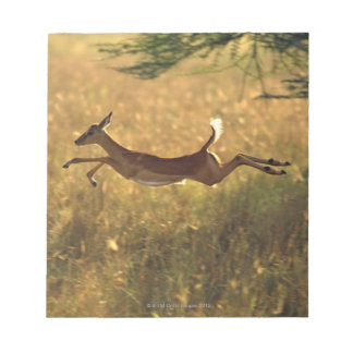Deer leaping through field notepad