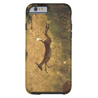 Deer leaping through field tough iPhone 6 case