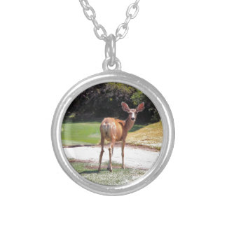 deer looking at the camera nature jewelry