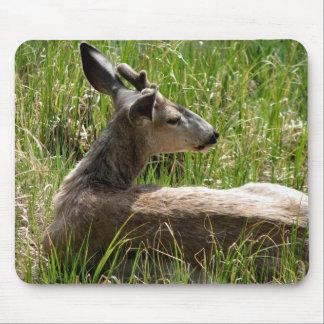 Deer Mousepad - The Sleeping Prince