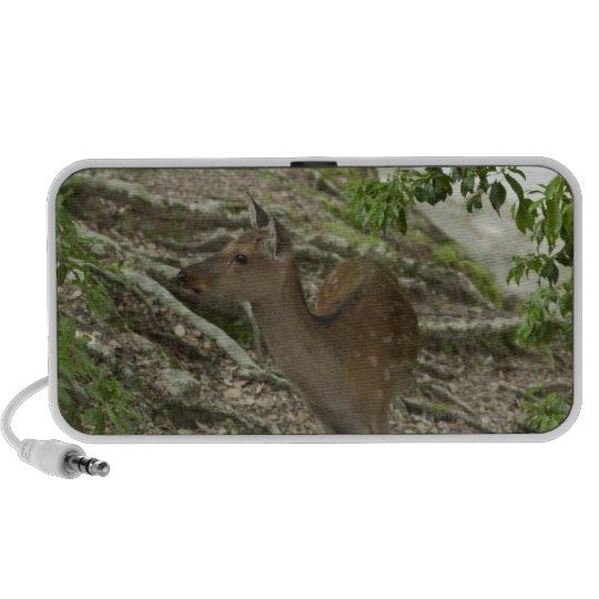 Deer Mp3 Speakers