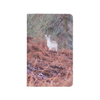 Deer on a hill journal