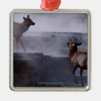 Deer on Rock Formation Christmas Ornament