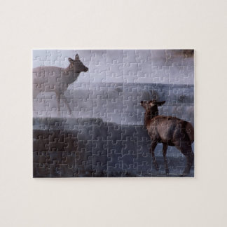 Deer on Rock Formation Jigsaw Puzzle