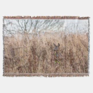 deer photograph blanket