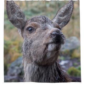 deer photograph shower curtain