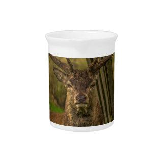Deer Pitcher
