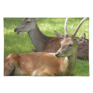 Deer Placemat