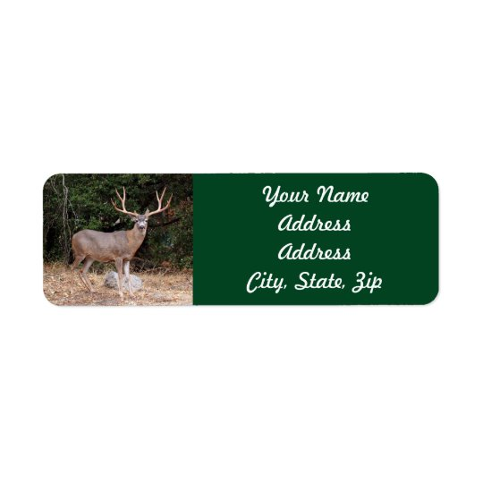 Deer Return Address Sticker Return Address Label