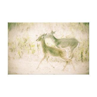 Deer Run Canvas Print