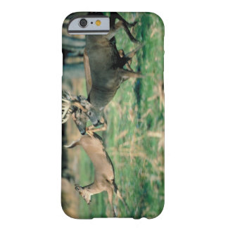 Deer running in forest barely there iPhone 6 case
