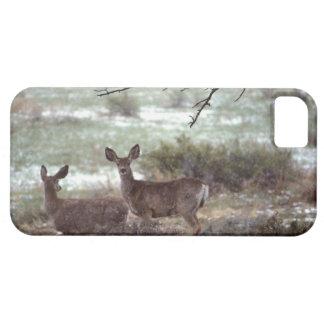 Deer running iPhone 5 cases