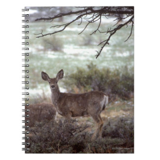 Deer running notebook
