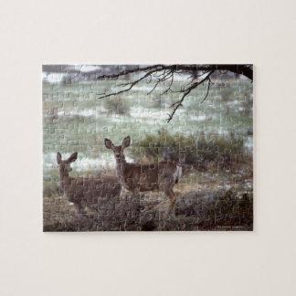 Deer running puzzle